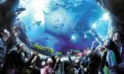 Hong Kong Ocean Park Discount Tickets