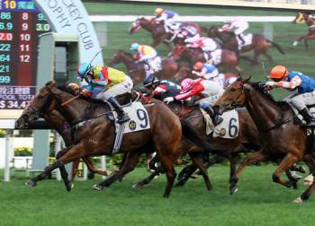 Chinese New Year Horse Races at Sha Tin