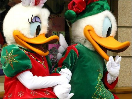 Donald and Daisy at the Character Greetings in HK Disney at Christmas Time