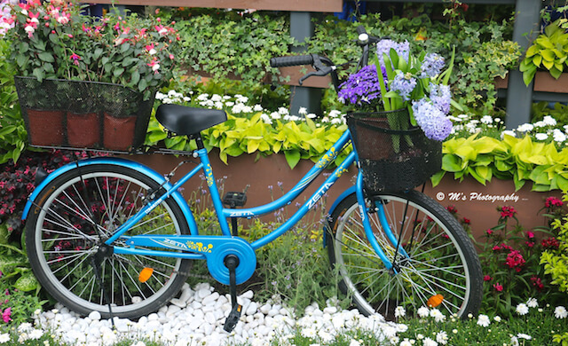 Floral Bike Display
