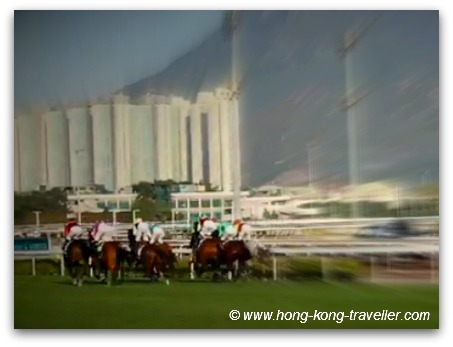 Sha Tin Race Course: The Hong Kong International Races