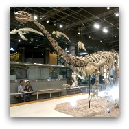 Hong Kong Museums: Science Museum