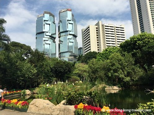 Summer is here, Central District views from Hong Kong Park