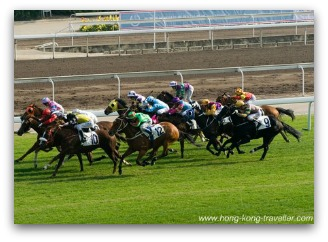Horse Racing at Happy Valley Hong Kong