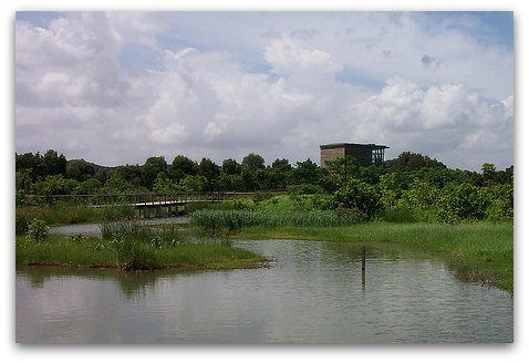 Hong Kong Wetland Park Bird Hide