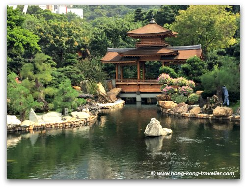 Nan Lian Garden and 4 elements of Classical Chinese Garden: Rocks, Water, Plants, Architecture