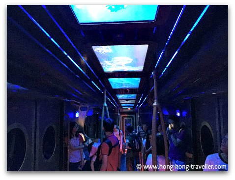 Riding the Ocean Express Tram
