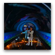 Ocean Park Highlights: Sturgeon Tunnel