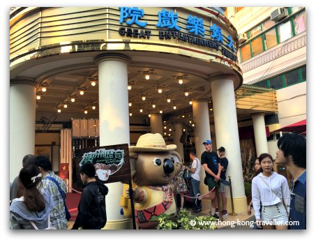 Old Hong Kong Vintage Theatre where the koalas are found