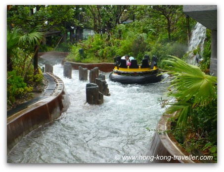The Rainforest at Ocean Park