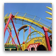 Ocean Park Highlights: Roller Coaster and Rides