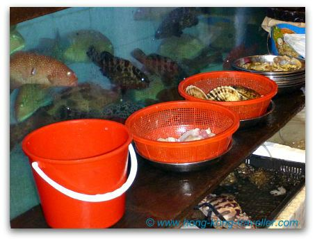 Seafood Restaurants Fish Tanks