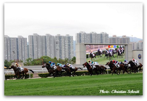 Hong Kong Horse Races at Sha Tin Racecourse