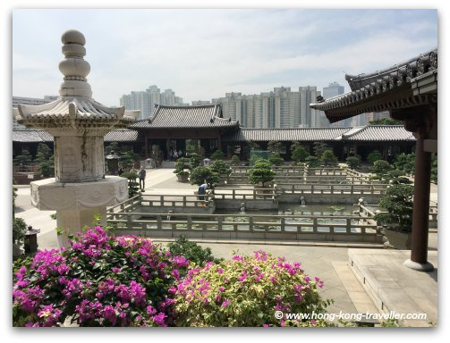 Blooming Bouganvilleas adorn the courtyards at the Chi Lin Nunnery