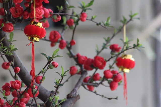 Hong Kong Chinese New Year is coming this February 16, 2018