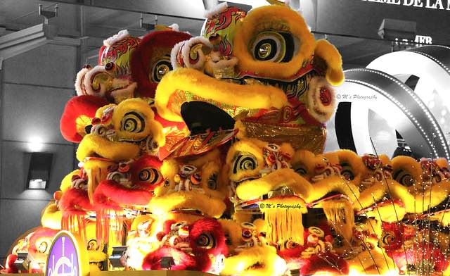 Hong Kong Chinese New Year Lions