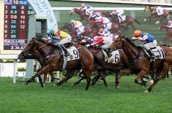 Sha Tin Race Course: The Hong Kong New Year Races