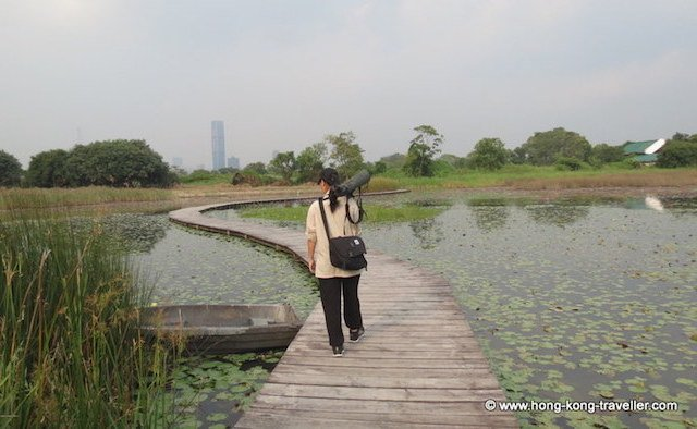 Birdwatcher with scope at the Mai Po Marshes