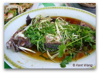 Steamed Fish in Hong Kong