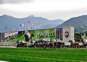 Hong Kong Horse Races in Sha Tin