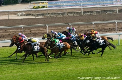 Horse Racing Hong Kong