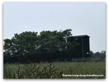 Mai Po Nature Reserve Bird Hides