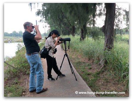 Mai Po Nature Reserve Gei Wai Paved Walkways