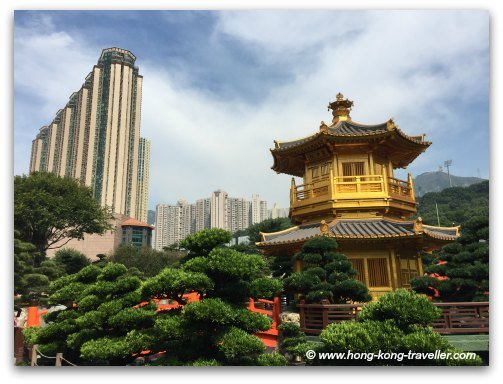 Nan Lian Garden: Traditional Chinese Architecture and Contrasting Skyscrapers