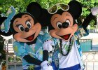 Mickey and Minnie in Swimming Costume