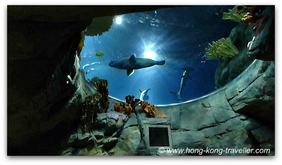Ocean Park Grand Aquarium