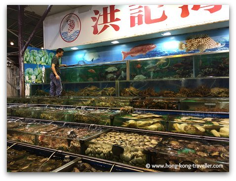 Tanks filled with fresh catch at Sai Kung
