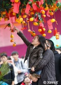 Tossing the wish messages and oranges over the tree, it it catches a branch, your wish will come true.